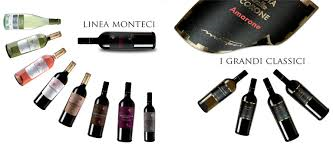 Monteci