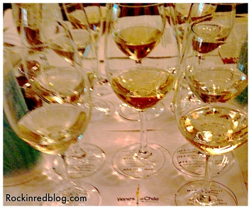 Wines of Chile1
