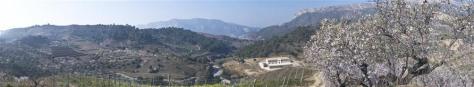 Bodegas Mas Alta