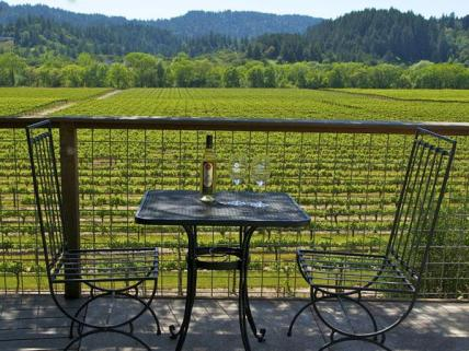 Sonoma County winery
