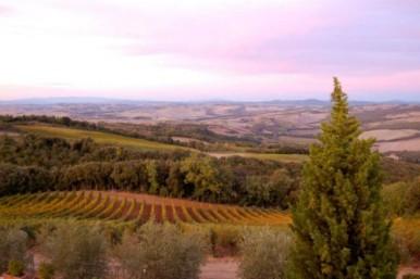 Tuscany - Terralsole