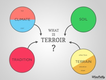 terroir-definition-for-wine