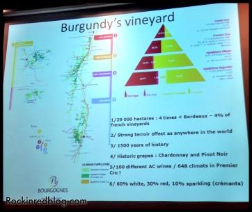 TW Burgundy Tasting (2)
