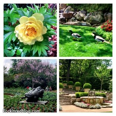 Williams Selyem Arboretum (2)