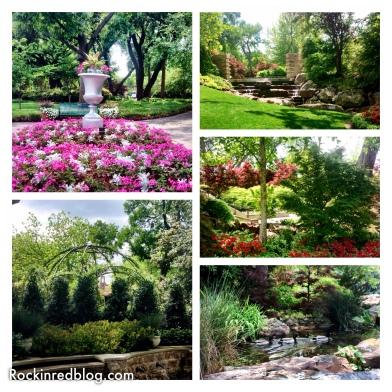 Williams Selyem Arboretum4
