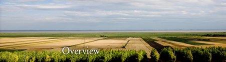 Hopler winery