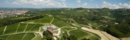 June WinePW Ceretto vineyards