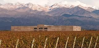 Rutini vineyards3