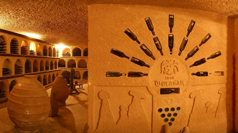 Winestudio May Turkey Turasan winery photo