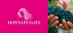 Donnafugata Summer logo