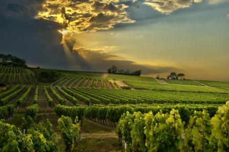 via creme-de-Languedoc.com