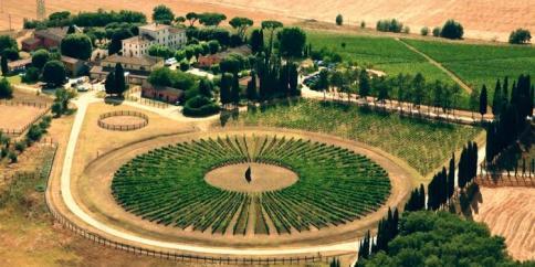 Tuscany vacation Avignonesi