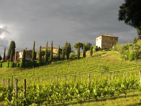 tuscany vacation ilpalazzone