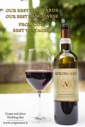 Avignonesi vini noble