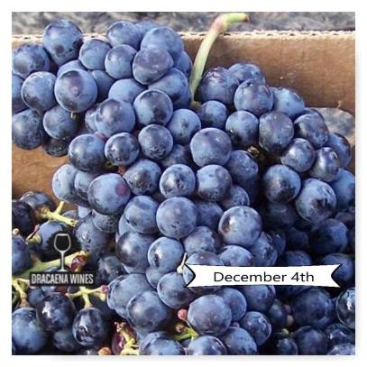 dracaena wines cab franc day via facebook