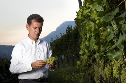 Ferrari Winestudio Marcello Lunelli