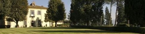 Frescobaldi Giramonte vineyards