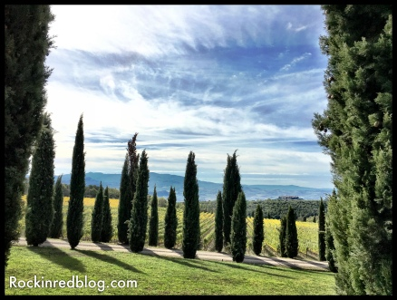 My view at Poggio Antico