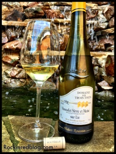 Loire Valley Pays Nantias wine