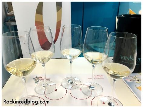 Soave wine tasting 2