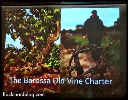 Wine Australia8