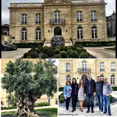 Grand Maison with 2,000 year old olive tree!