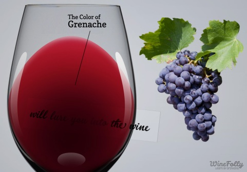 Grenache via winefolly