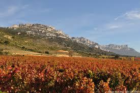 Basque wine country rioja alavesa