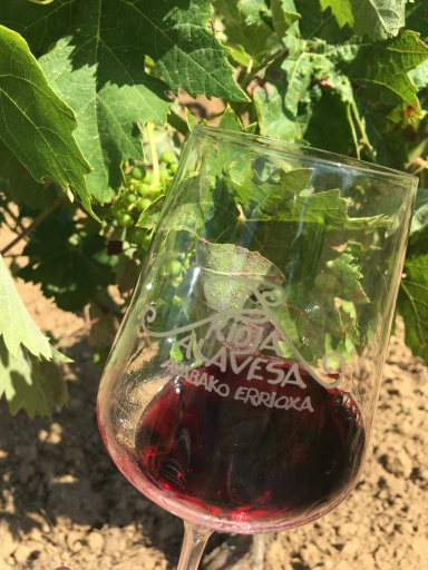 Wine in the glass from the grapes on the vine behind. New meaning to drink local!
