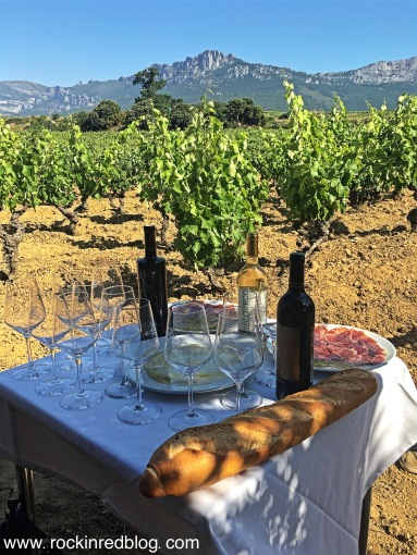 Breakfast in the vineyard at Gil Berzal.