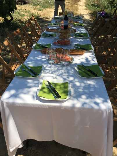 Lunch in the vineyards of Laukotel in Rioja Alavesa.