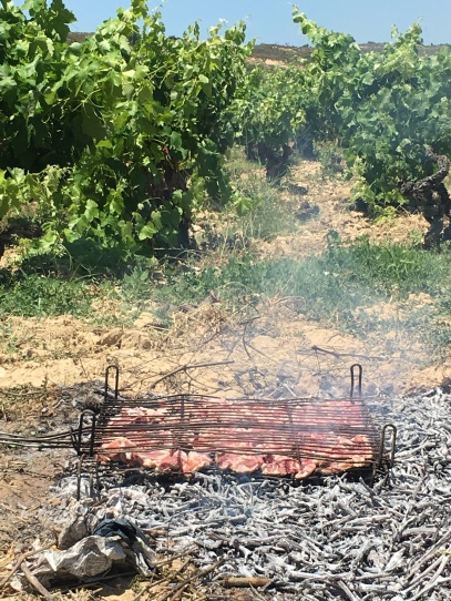 Lamb cooking on the vines.
