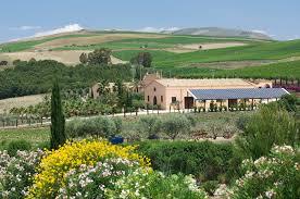 Donnafugata's Contessa Entellina estate