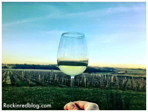 Me holding a glass of Chateau Fombrauge Bordeaux Blanc overlooking the vineyards as the sun was setting in one hand, while taking this unfiltered photo with my iPhone on the other hand. The beauty of Saint-Emilion