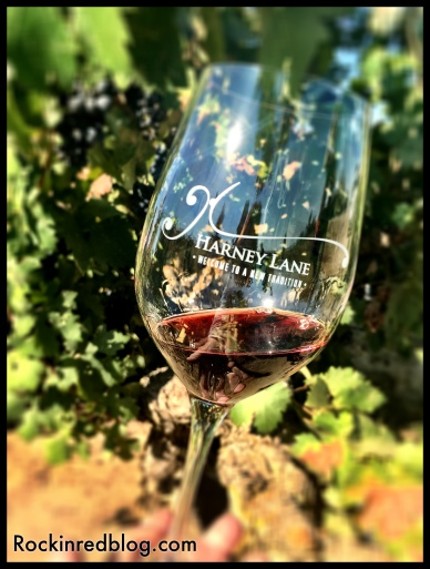 Drinking Harney Lane Lizzy James Vineyard Old Vine Zinfandel IN the Lizzy James Vineyard. How cool is that?