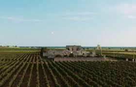 tenute rubino winery puglia