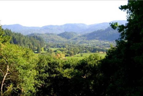 rombauer-view-via-napatouristguide