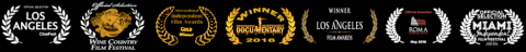 burgundy-movie-awards
