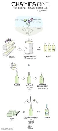 champagne-traditional-method-via-winefolly