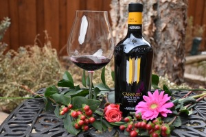 astoria-caranto-piont-noir-italian-wine
