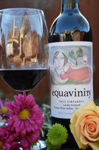 equavinity-zin