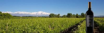 nieto-senetiner-vineyards