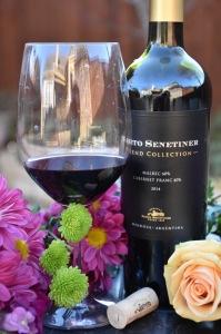 nieto-senetiner-wine2