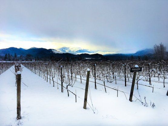 Troon Vineyards and the Applegate Valley January 2017 via Craig Camp www.winecampblog.com/journal
