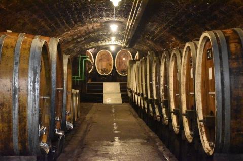 pfalz cellar